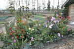 jardins-familiaux-disponible